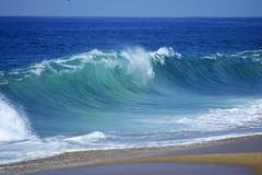 DSC09107 (palmtreeman) Tags: ocean sea beach water surf waves surfing wedge bodyboarding skimming bodysurfing