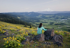 what the heart wants (manyfires) Tags: sunset selfportrait me oregon self landscape spring mthood pacificnorthwest wildflowers hillside paintbrush hoodriver balsamroot
