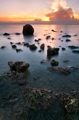 Jagged Turtle (dinno19) Tags: bw tourism sunrise landscape se nikon turtle 9 tokina lee sanctuary davao 1224 nd106 d300s thepowerofnow