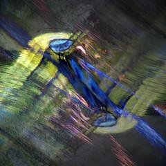 Sogna Inspiration #4 (Krogen) Tags: nature norway norge natur may norwegen mai noruega scandinavia akershus springtime romerike vår krogen noorwegen noreg skandinavia nannestad sogna romerikelandskapsvernormråde olympusep2 tvisyn