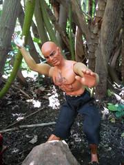 Mattel's Dr.Steel, Kung Fu Master. (atjoe1972) Tags: toys actionfigure pack kungfu 1970s mattel bigjim fudogs drsteel atjoe1972