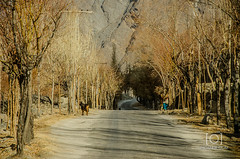 Skardu (M.Omair) Tags: from road city autumn winter brown white snow tree water beautiful yellow fog clouds river sand nikon view desert you photos fort top or peak valley everyone omair leafs indus vr 18105 skardu baltistan shigar virgomair d7000 imomair kharpachu gilgitl kharphocho