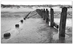 Looking Back (roddersdad) Tags: blackandwhite beach coast march 2012 groynes spurn spurnpoint coastaldefences canonef24105mmf4lisusm canon1dsmk2 wwwimagesbyclivecouk copyrightclivejmaclennan