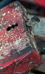 Schrottiges (〖】〖 peter vogel.troll) Tags: metall eisen schlos gartengarden türschlos bsleiferde arealgermanygermanfederalrepublic arealbraunschweigbrunswik arealniedersachsen•lowersaxony