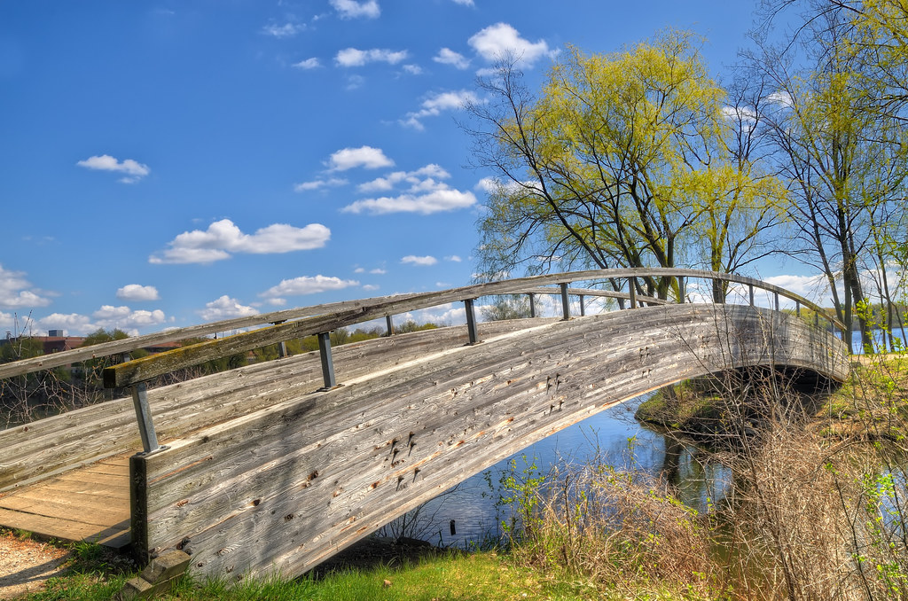 Wooden bridge in North Bay Park / 北灣公園的木橋