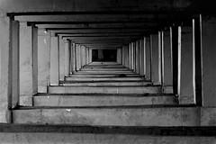 Under the bridge 01 (Aschevogel) Tags: bridge india fishing jay chennai brcke tamilnadu fischer mahabalipuram underthebridge fishermansfriend hindistan unterderbrcke kprdenaltinda