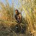 Aman Hassan Harvests Elephant Grass