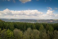 Eifel landscape (stevefge) Tags: trees forest germany landscape eifel