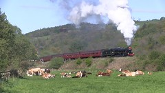 LMS Black Five No.45428 (masquerading as 45066) southbound at Esk Valley [NYMR] (soberhill) Tags: steam pickering lms grosmont nymr 2016 blackfive northyorkshiremoorsrailway eskvalley black5 45066 45428 scottishbranchlinegala