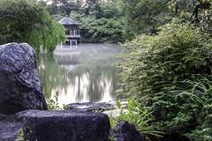 Narita Pond FS (Jim Truscott) Tags: japan sunrise canon temple eos tokyo pond rocks buddhism jim gazebo chi 7d ki narita naritasan truscott naritasantemple chibu jimtruscott