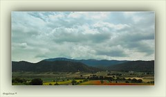POR LOS CAMPOS DE LA MANCHA (Angelines3) Tags: nwn