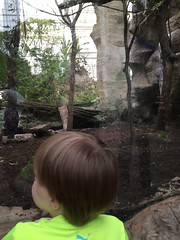 "Paul at the Dallas Aquarium • <a style=""font-size:0.8em;"" href=""http://www.flickr.com/photos/109120354@N07/27244228583/"" target=""_blank"">View on Flickr</a>"