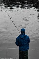fly fishing (RCB4J) Tags: art nature photography scotland wildlife flyfishing universityofglasgow hss guvs notsooc garscubeestate sigma150500mmf563dgoshsm ronniebarron rcb4j sonyilca77m2