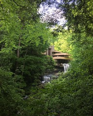 Fallingwater (Noe Todorovich) Tags: nature architecture franklloydwright fallingwater