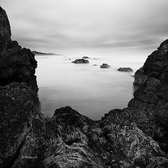 (rainbow wasabi) Tags: blackandwhite seascape beach nature monochrome oregon square landscape coast rocks pacific northwest cloudy humid