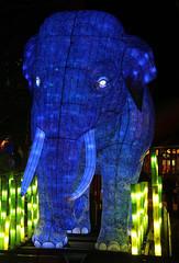 Vivid 2016 Taronga (iansand) Tags: sculpture vivid taronga tarongazoo vividfestival utata:project=tw529
