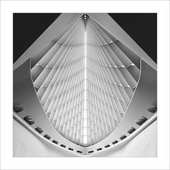 claraboia / Skylight (ximo rosell) Tags: light blackandwhite bw blancoynegro luz wisconsin nikon museu bn minimal calatrava milwaukee d750 llum wis milwa ximorosell