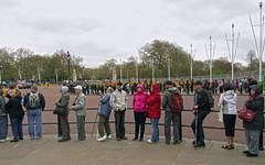 people in london (maximorgana) Tags: people tree london standing walking hoodie cloudy queue backpack stick raincoat