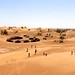 Desert tourism - camp, four wheel drive vehicles, camels and geography students