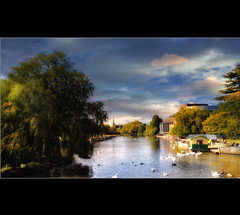 The River Avon VI (Chariots_of_Artists) Tags: trees nature water river swan community theater theatre shakespeare literature stratforduponavon theriveravon mygearandme mygearandmepremium mygearandmebronze mygearandmesilver mygearandmegold mygearandmeplatinum mygearandmediamond flickrstruereflection1 flickrstruereflection2 flickrstruereflection3 flickrstruereflection4