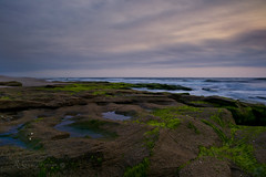 Northern View (Glenn Anderson.) Tags: ocean morning sea water rock clouds sunrise sand surf waves atlantic coquina a850