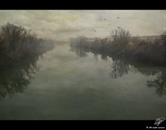 The river's mist (Xag.) Tags: trees mist cold birds fog clouds ro river arboles reflected pajaros nubes niebla frio bruma reflejado xag