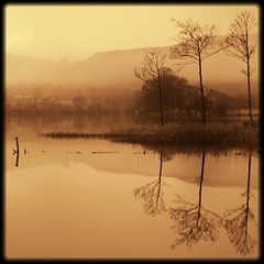 l    lll (kenny barker) Tags: winter mist reflection water sepia landscape lumix scotland day loch trossachs lochard kinlochard alwaysexc landscapeuk panasoniclumixgf1 welcomeuk kennybarker