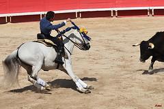 Leonardo Hernandez (amcadweb) Tags: horse france cheval feria paca arles corrida toro ventura 2012 hernández paques rejon bohorquez murube