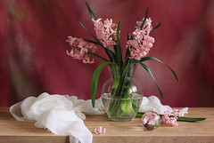 Time And Eternity (panga_ua) Tags: lighting pink stilllife motion art water colors composition canon reflections spectacular spring artwork artistic sweet availablelight clarity ukraine poetic creation memory april imagination natalie oakwood delicate arrangement tabletop hyacinth gettyimages bodegon naturemorte crystalball panga artisticphotography hyacinthus pinkflowers rivne naturamorta hyacinths glassvase blurrybackground artphotography sharpfocus whitescarf timeandeternity  nataliepanga