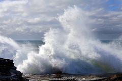 Freshwater Rocks (Mark Merton) Tags: big surf waves nsw freshwater markmertonaerialphotography