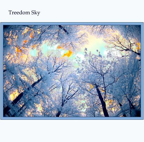 blue trees sky clouds germany landscape himmel wolken ciel infrared blau landschaft bäume arbre taunus wetter wether zenitar16mmfisheye makario 680nm 100commentgroup mygearandmebronze mygearandmesilver mygearandmegold mygearandmeplatinum
