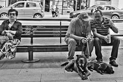 L1013113.jpg (fraldi00) Tags: madrid street bw photography reportaje