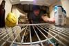 202/365 (Bradley Nash Burgess) Tags: beer project fridge nikon perspective fisheye photoaday inside 365 8mm project365 d80 nikond80 rokinon 365project rokinon8mm rokinon8mmfisheye
