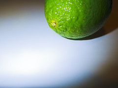 Lime - h7808 (SouthernBreeze) Tags: life travel family friends light stilllife food usa white green fruit t fun photography photo still raw pentax photos photograph optio citrus lime gps 2012 southernbreeze wg1