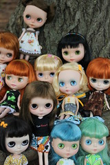 My Blythe Famly as of now, more coming soon!