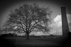 Campo de concentracin de Sachsenhausen (marieta.c) Tags: bw berlin nikon alemania sachsenhausen campodeconcentracion nikond7000