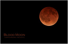 Blood Moon (arbyreed) Tags: red moon blood rust lunareclipse bloodmoon redmoon arbyeed
