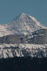 Mönch mit Sieben Hengsten im Vordergrund in den Berner Alpen - Alps im Berner Oberland im Kanton Bern der Schweiz (chrchr_75) Tags: hurni christoph schweiz suisse switzerland svizzera suissa swiss chrchr chrchr75 chrigu chriguhurni chriguhurnibluemailch mai 2016 mai2016 hochformat mönch kantonbern kantonwallis kantonvalais berg mountain montagne alpen alps berner oberland susisa albumregionthunhochformat thunhochformat kanton bern