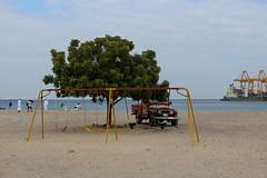 IMG_0033.jpg (svendarfschlag) Tags: family tree beach port jeep uae swing emirates arab emirate unitedarabemirates beachday fujairah khorfakkan خورفكان gulfofoman golfvonoman fudschaira chaurfakkan vereinigtenarabischenemiraten chūrfakkan