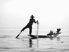 One-Legged Rowing on Inle Lake (Feldore) Tags: lake net silhouette one boat fishing fisherman steering traditional leg rowing oar myanmar inle burmese legged rower sunhat onelegged buma