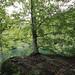 Plitvice Lakes _1940