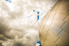 We Followed Our Insticts in the Worst Kind of Ways (Thomas Hawk) Tags: usa museum architecture america mississippi unitedstates unitedstatesofamerica gehry biloxi frankgehry fav10 harrisoncounty ohrokeefemuseumofart