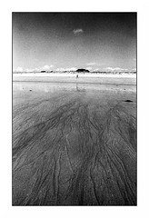 Larmor (Punkrocker*) Tags: sea people mer film beach nikon kodak trix wide bretagne nb 400 f2 24mm nikkor plage morbihan sb ais lorient 2428 larmor bwfp