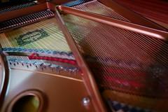 IMG_0025 (bombluan) Tags: leica piano q yamahapiano leicaq