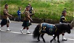 Parade2 (lairig4) Tags: scotland stirling armedforcesday military show kingspark parade music 2016