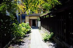 Sunny day (yasu19_67) Tags: shadow sunlight japan zeiss 35mm shrine atmosphere silence osaka hydrangea sunnyday photooftheday filmlook filmlike vsco vscofilm sel35f28z sonnartfe35mmf28za sony7ilce7 sonnar3528za