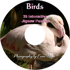 Birds Jigsaws - Fran West (Fran West) Tags: pelicans birds flamingo australia games macaw puzzles parrots franwest jigsaws jigsawpuzzles spoonbillkingparrot