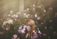 (Shelby Robinson) Tags: pink flowers portrait eye texture girl face rose self canon rebel 50mm bush f18 teenage t1i