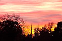 Neon sky (suesthegrl) Tags: pink sunset sky toronto silhouette clouds neon cntower wispy