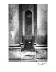 Church Columns ~ Zenobia (Colin Clarke~) Tags: bw film architecture print zenobia digitalnegative colinjclarke ziaptype